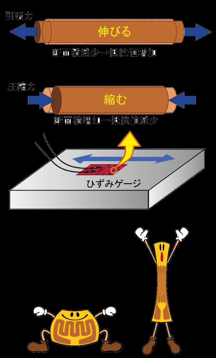 ひずみゲージ入門 | 共和電業